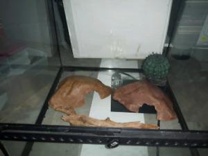 Terrarium pour reptile