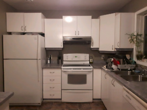 Kitchen cabinet and counter top