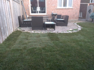 Get a new lawn today! Only $1.10 per sqft total cost