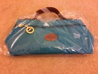 Longchamp cosmetic case/clutch