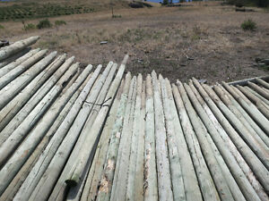 2-3 x 8' treated posts
