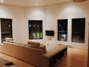Amazing Loft in the heart of Montreal with a room for rent