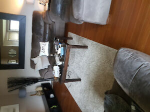 3 piece couch/Love seat/chair