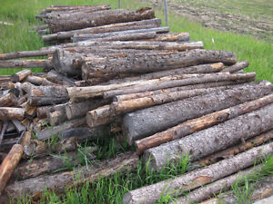 WOOD WAGON  AND FIRE WOOD FOR SALE !  OPEN TO OFFERS