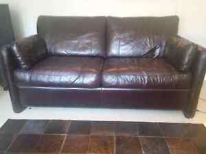 Jay Rand High Grade Leather Pull out couch