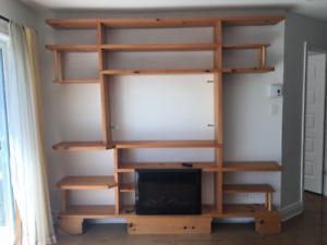 meuble télé et foyer (cheminée)