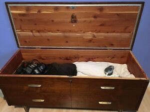Lane cedar chest London Ontario image 2