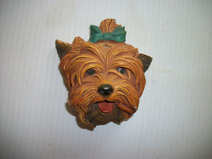 Bosson Yorkshire Terrier