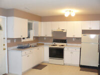 Available March 1st! Daylight Basement Suite