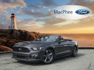 2017 Ford Mustang V6  - Bluetooth - Low Mileage