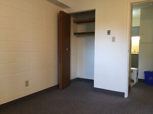 3-Bedroom clean and Spacious in university area for great price Kitchener / Waterloo Kitchener Area image 5