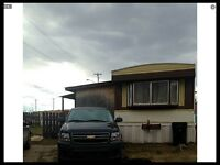 Mobile home for sale in Drayton valley