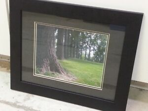 Framed picture