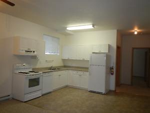 2 bedroom basement suite available June 1st.