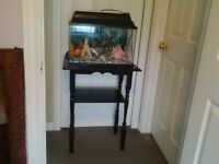 10 Gallon Aquarium & Stand