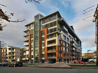 Bright West-Facing Corner Unit in James Bay