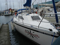Great boat for a great price!