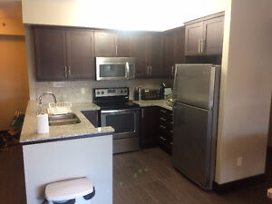 2-FLOOR KING STREET TOWERS (LUXE 2) SUMMER SUBLET (May - August)