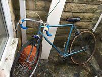 Blue sun racing bike