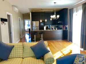 4 1/2 Bright & Large apartment with powder room in St Laurent