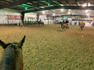 Adult and Kid Riding Lessons