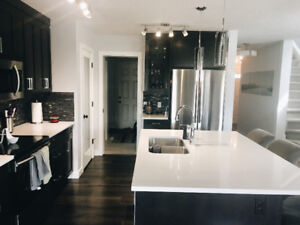 2 Bedroom Luxury Duplex With Finished Basement, AC and Stonewall