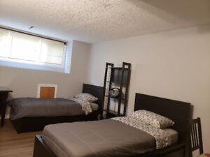 Homestay Furnished  Room Rental