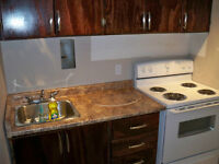 Large renovated one bedroom bachelor suite for rent