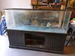 125 gallon tank + salt accessories + Stand and Canopy