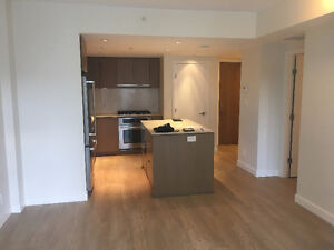 South Facing, big 1 Bedroom and Den with parking/storage/Balcony