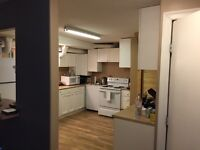 2 bedroom basement suite electrical included