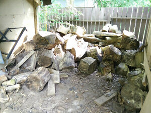 FREE Hardwood Firewood! Literally Tons. In Brantford City.