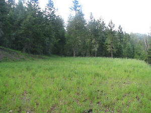 Build your dream home in one of Williams Lakes finest locations Williams Lake Cariboo Area image 2