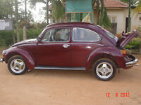 Looking for Volks Wagen - Beetle   Classic