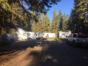 Newly renovated mobile home on 1 acre with shop in Kersley