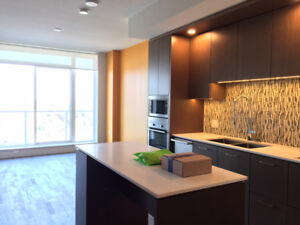 Brand New One Bedroom at 3 Civic Plaza Residence