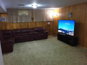 1 bedroom basment suit for rent