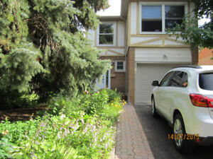 $995 / One Bedroom Apt, Separate Entrance for Rent, North York
