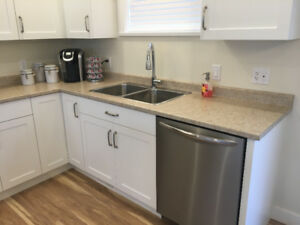 Laminate Counter Tops and Island Top