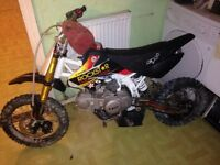 125 cw pitbike