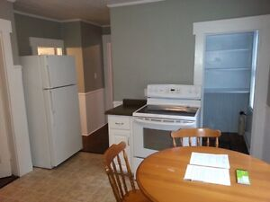Three Bedroom Lower Level House Downtown