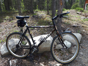 Men's mountain bike for peanuts