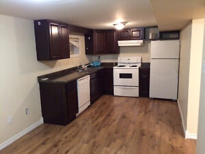 One bedroom basement apartment for rent in paradise