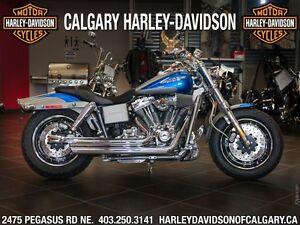 2009 Harley-Davidson FXDSE