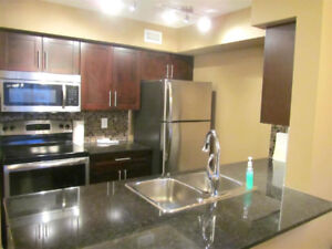 1 Bedroom Plus Den Condo with Balcony and Ensuite Laundry