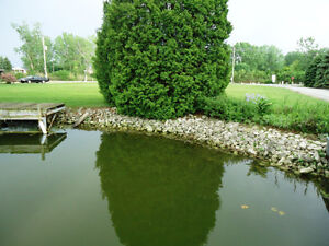 X-Wide (116ft) waterfront canal corner lot Lake St-Clair! Windsor Region Ontario image 9