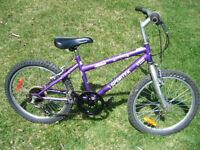 Sportek 20 inch bike