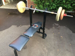 Bench Press and Weights $80