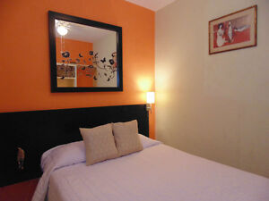 Come and enjoy Mexico city, suites nights for weeks or months !!