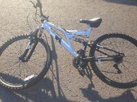 Dunlop mountain bike great condition